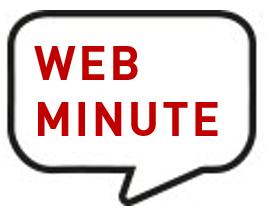 WEBMINUTE BDL