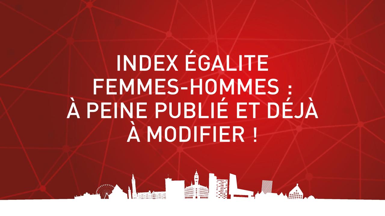 INDEX ÉGALITE FEMMES-HOMMES : À PEINE PUBLIE ET DÉJÀ À MODIFIER !